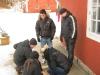 teambuilding_aktiviteter_fakta_vejle-31